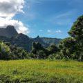 moorea-island-landscape-with-mountains